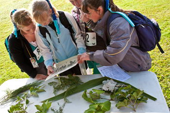 School Sustainability Challenge Event 1 at Ambury Regional Park