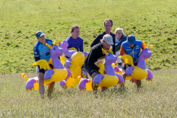 P6 and P3 INTRODUCTORY ADVENTURE RACE