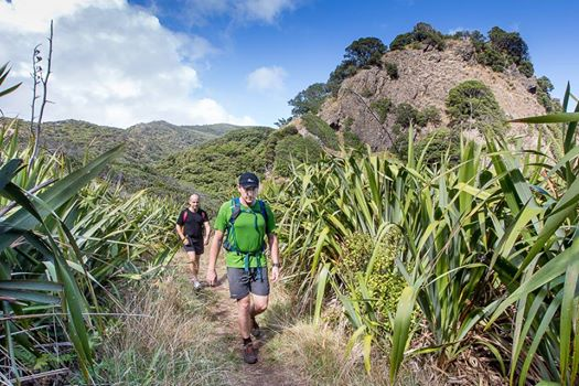 Piha to Karekare 10km Trail run & Walk
