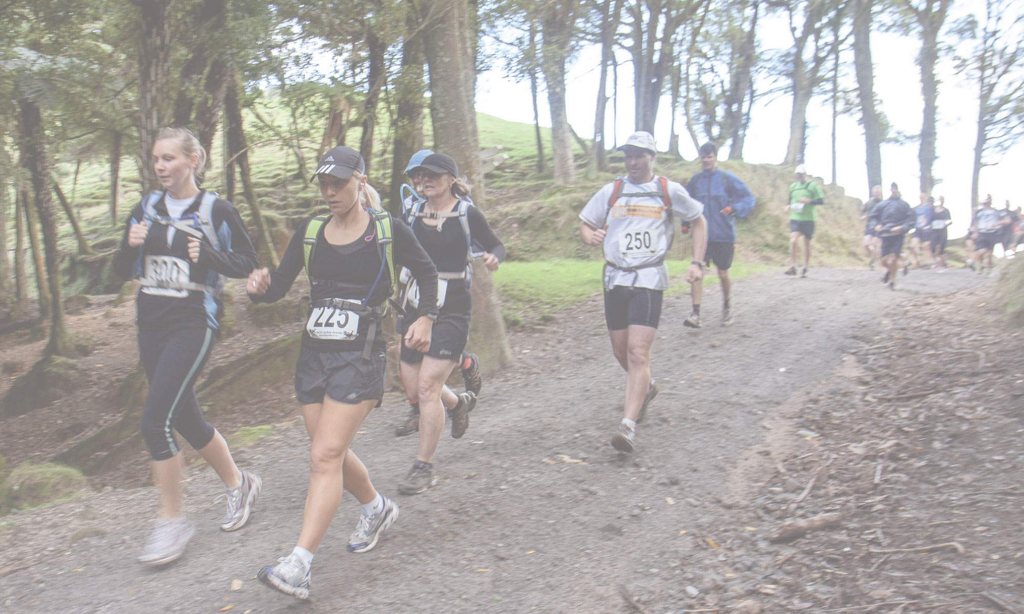 Bivouac Outdoor Wild Auckland Trail Run/Walk Series